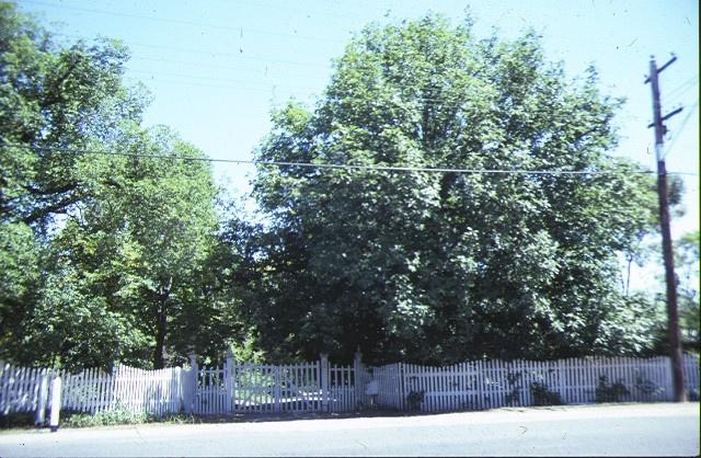 heidi 1 templestowe road bulleen front fence feb1988