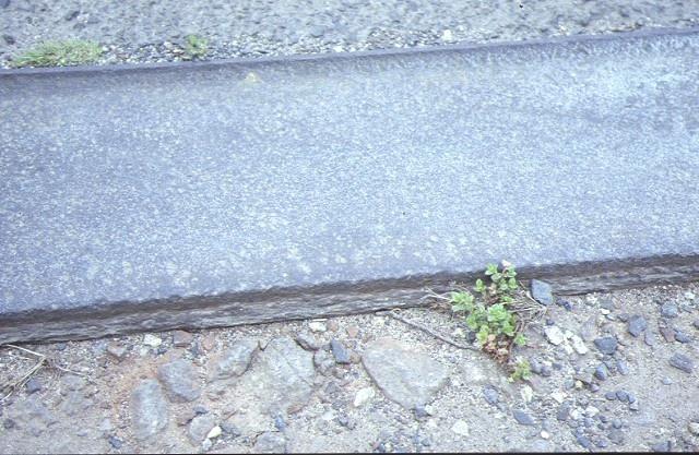 market gardeners tram plateway centre dandenong road heatherton top view of plateway 1992