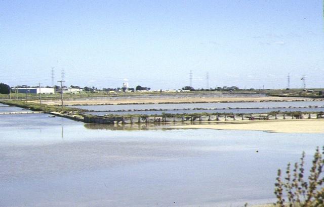 1 cheetham saltworks portarlington road moolap crystallisers nov1995