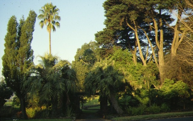 1 footscray park ballarat road footcray palms