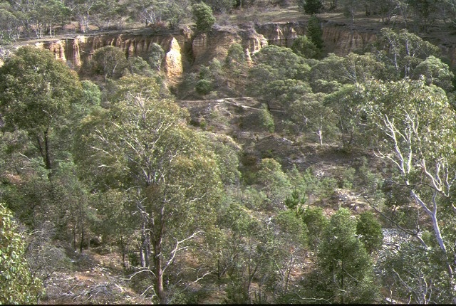 1 oriental claims sluicing omeo cliffs view