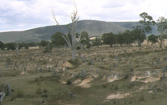 1 number 1 lead gold mine avoca site view