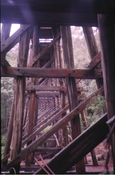 rail bridge noojee trestle view