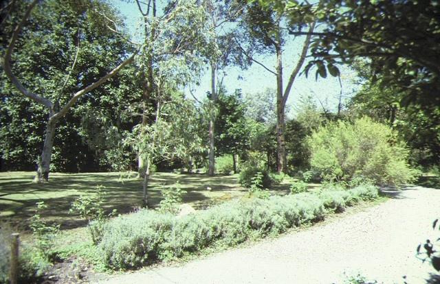 heide 7 templestowe road bulleen garden view feb1988