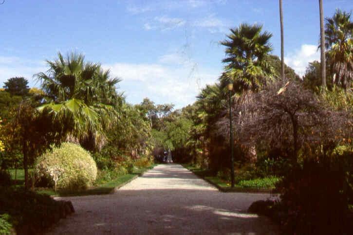 1 williamstown botanic gardens palm avenue ac2 apr1999