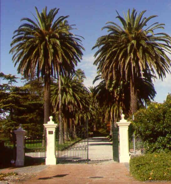 1 st kilda botanic gardens entrance jh may 1998