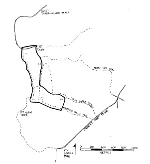 lisles & mantons gullies quartz gold mine maldon plan