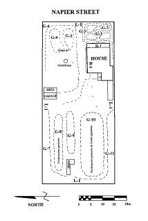dawson cactus bendigo plan