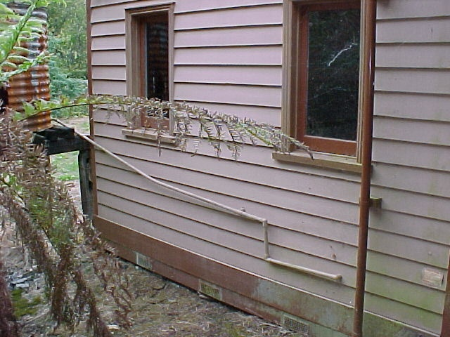H00583 walhalla po exterior openings mar 2003