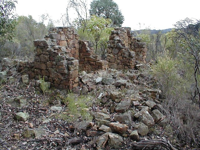 h02047 castlemaine diggings chokem flat july02 db