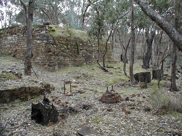 h02047 castlemaine diggings spring gully july02 db