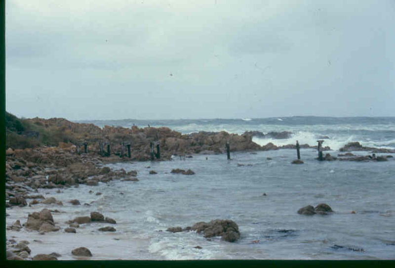 h01983 pt hicks jetty ruins dec99 pm1