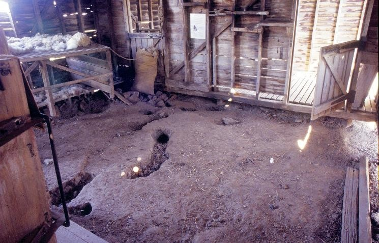 h00384 gulf station melba hwy yarraglen shearing shed interior she project 2003