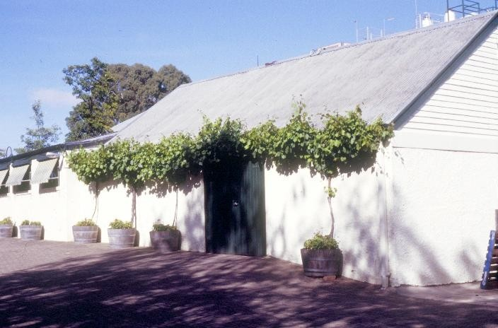 h00338 seppelts champagne cellars moyston road great western shaft house she program 2004