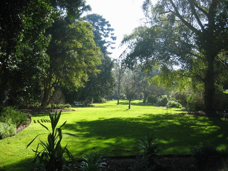 H2095 Geelong Bot Gardens 8.2005
