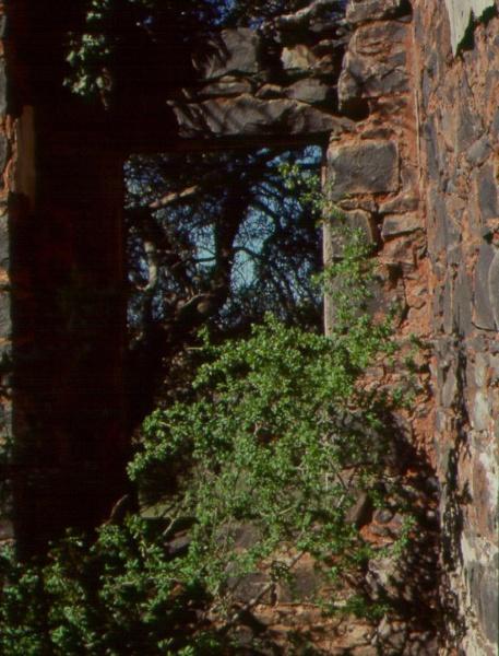 Rockbank Window