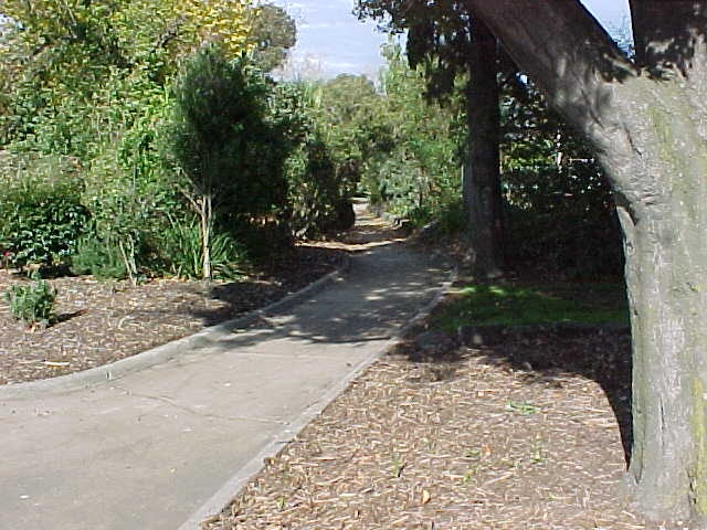 McKay Gardens Path Through Centre