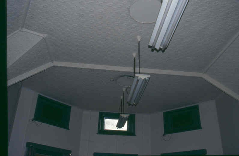 Royal Park Hospital Ward Ceiling April 2002