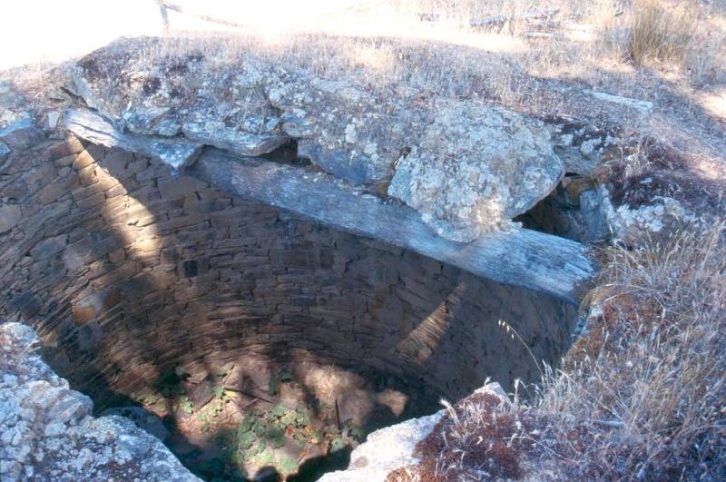 Elvezia Well 2004