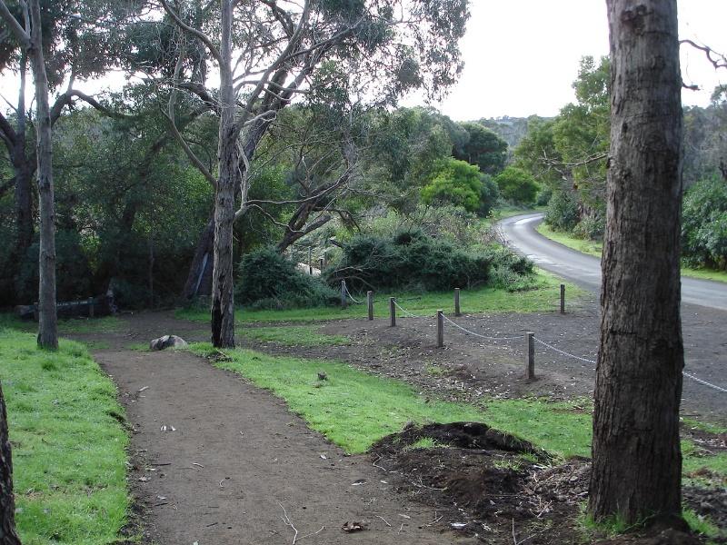 2114 Tower Hill State Game Reserve vegetation jun06