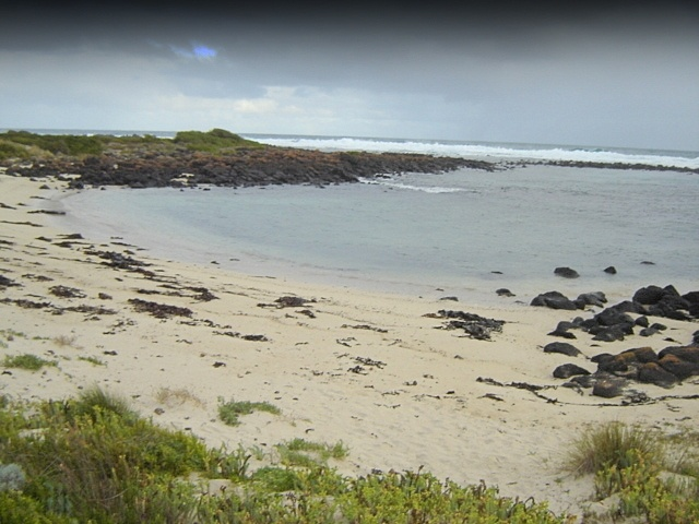 H1659 griffith island port fairy beach1