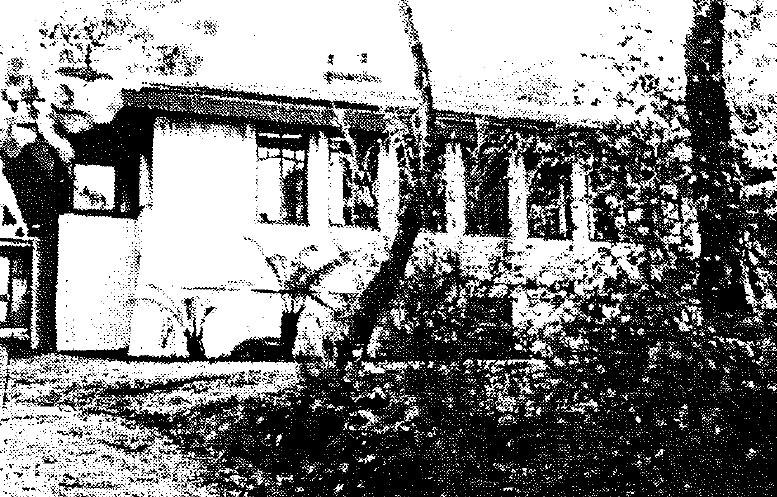 Camberwell Conservation Study 1991