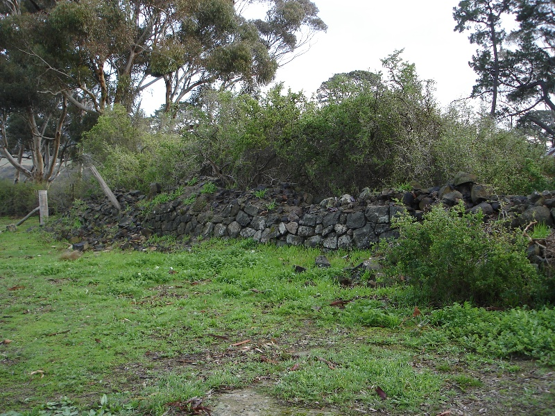 Summer Hill small cow shed site KJ 10 July 07 4