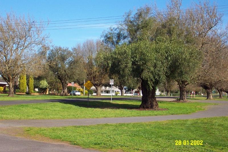 23347 Avenue of Trees Martin Street Penshurst 1470