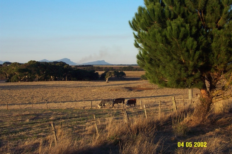 23312 Correagh view to Grampians 0911