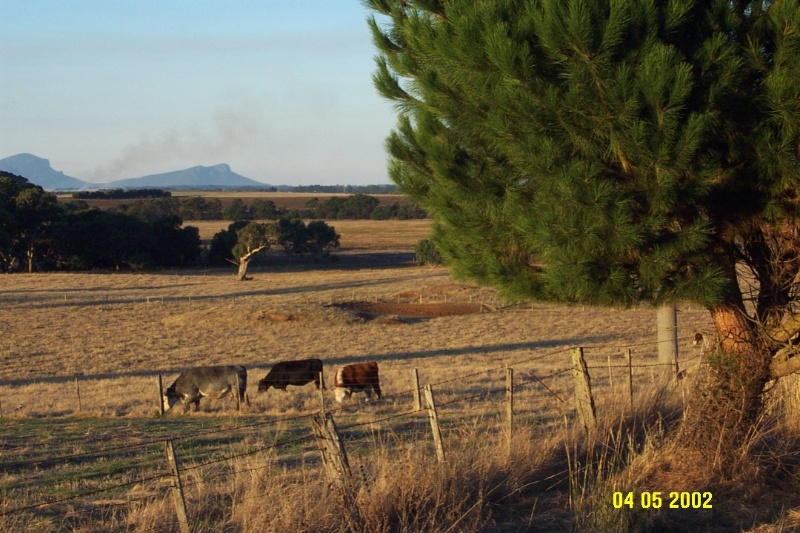 23312 Correagh view to Grampians 0912