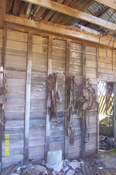 23313 Doolan Doolan Strathkellar stable 1911