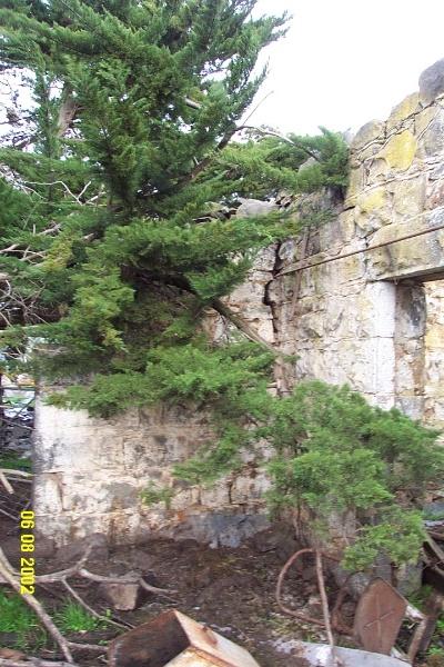 23113 Hilgay Coleraine front verandah 1247