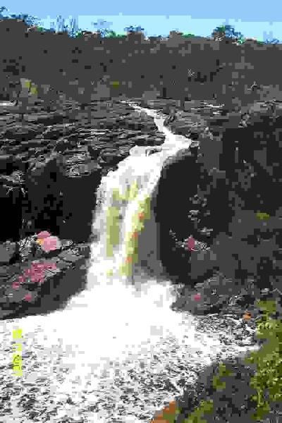 23207 Nigretta Falls 0191