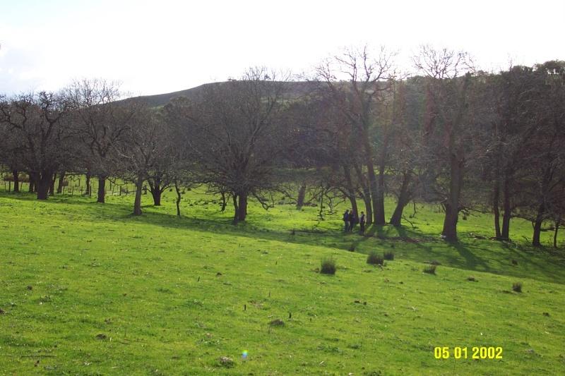 23117 Park Hill Yulecart original site 1371