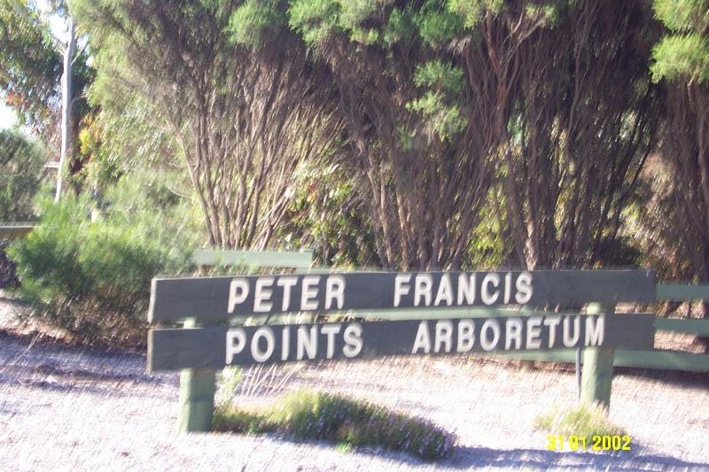 23070 Peter Francis Arboretum Coleraine 0463