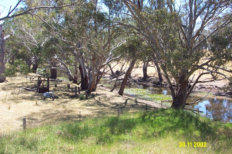 23259 Woodlands Woolscour Balmoral 2094
