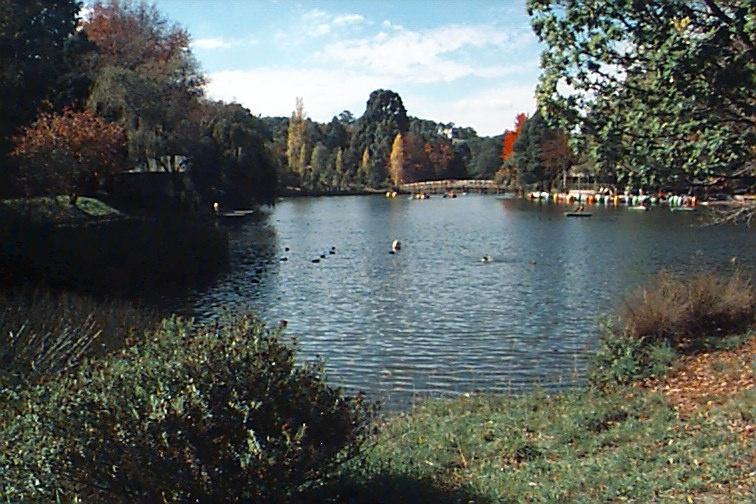 Emerald Lake Park & Landscape 3