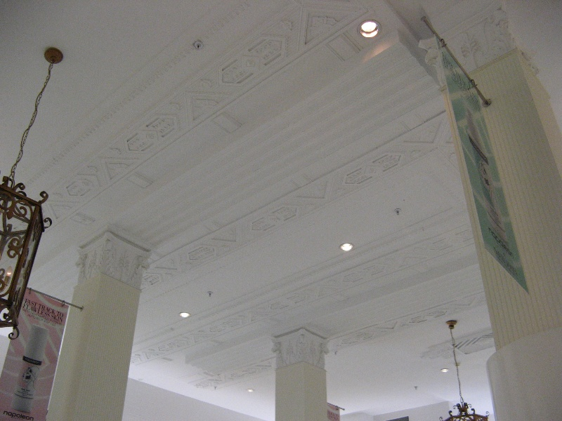 David Jones_plaster ceiling_16 Jan 08