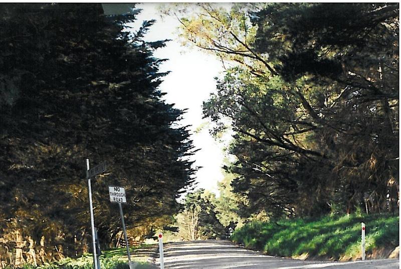 22769 Lakeview Nurseries - Lower Homestead Road, Wonga Park