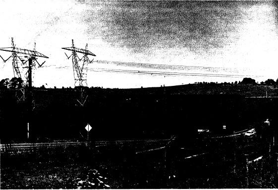 1 - Hawthorn Hedges in Kangaroo Ground03 - Shire of Eltham Heritage Study 1992