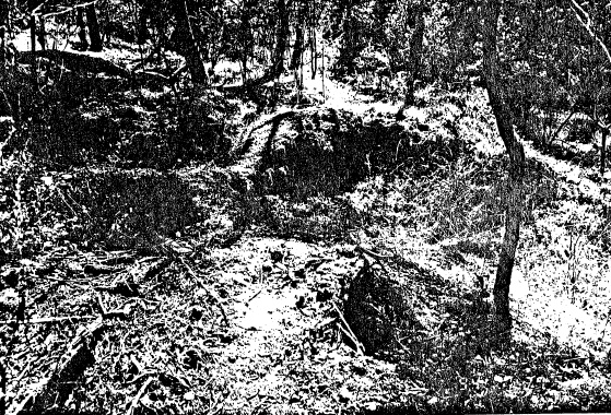 26 - Alluvial Gold Mining Remains end Blue House Rd - Shire of Eltham Heritage Study 1992