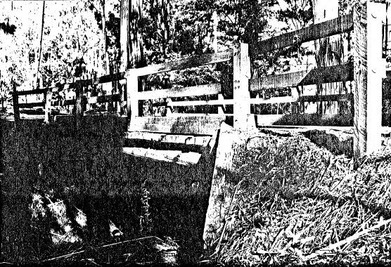 33 - Timber Trestle Road Bridge over Arthurs Creek - Shire of Eltham Heritage Study 1992
