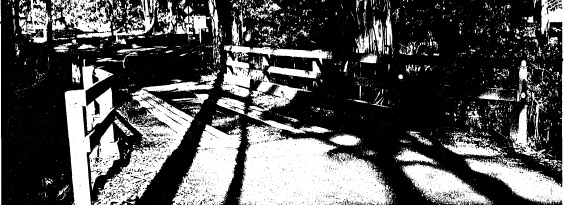 33 - Timber Trestle Road Bridge over Arthurs Creek_02 - Shire of Eltham Heritage Study 1992