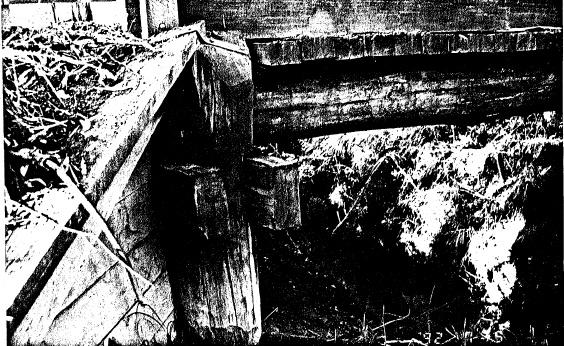 33 - Timber Trestle Road Bridge over Arthurs Creek_03 - Shire of Eltham Heritage Study 1992