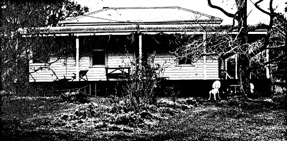 47 - House and Planting Cott Bridge Strath Rd - Shire of Eltham Heritage Study 1992