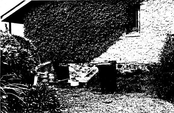 62 - Former Wellers Pub at Pitman Cnr Kangaroo Ground_04 - Shire of Eltham Heritage Study 1992