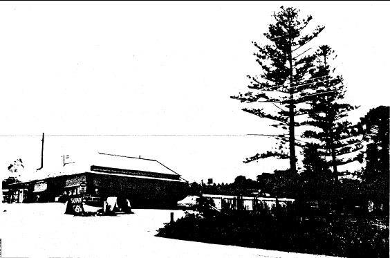 65 - Kangaroo Ground General Store Post Office Pines_03 - Shire of Eltham Heritage Study 1992