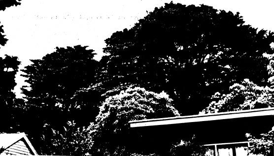 69 - Garden Hill Shearing Shed Elth Yarra Glen Rd_09 - Shire of Eltham Heritage Study 1992