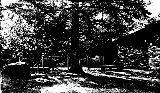 81 - Hurst Family Cemetery Greysharps Rd - Shire of Eltham Heritage Study 1992