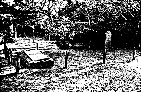 81 - Hurst Family Cemetery Greysharps Rd_03 - Shire of Eltham Heritage Study 1992